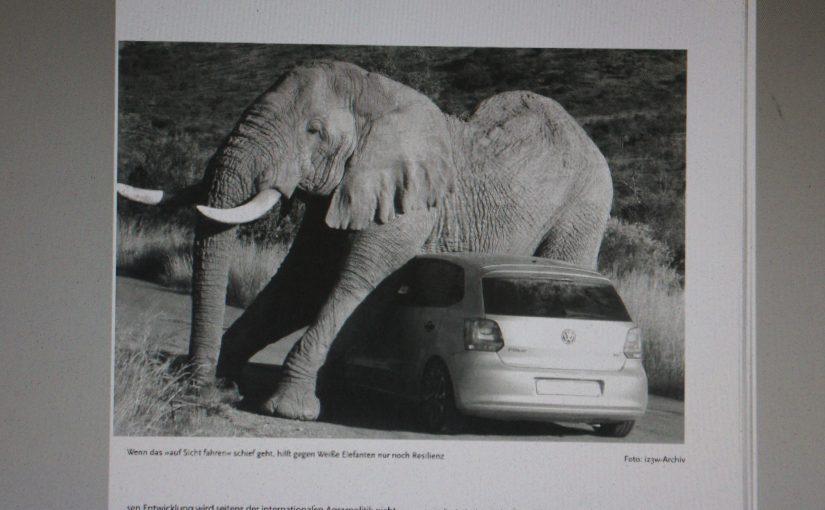 Fahrerflucht: Geschichten aus der deutschen und südafrikanischen Provinz